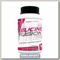 Leucine Fusion