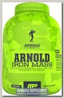 Iron Mass Arnold Series
