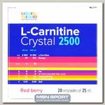 L-Carnitine Crystal 2500