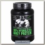 100% Hydrolyzed Whey Protein (гидролизат)