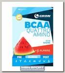BCAA Quattro Amino