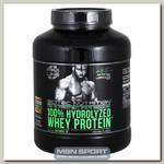 100% Hydrolized Whey Protein (гидролизат)