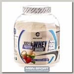 100% Whey protein