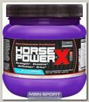 Horse Power X