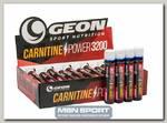 Carnitine Power 3200