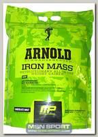 Iron Mass